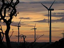 Australian Canunda Wind Farm. South Australia         (Wikipedia)
